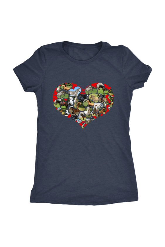 Heart Shape Horses - Tops-Tops-teelaunch-Ladies Triblend-Navy-S-Three Wild Horses