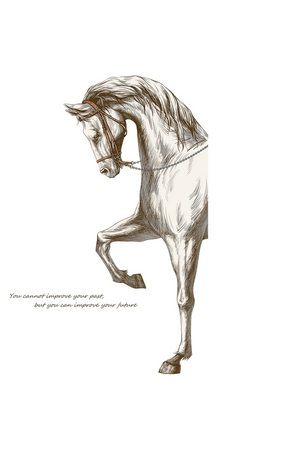 Beige Elegant Stride Horse Wall Decal