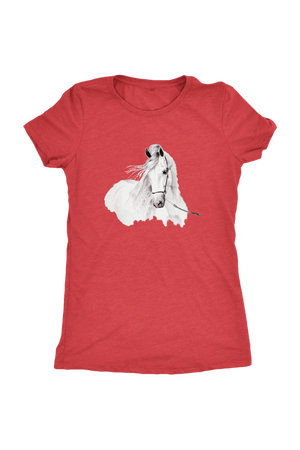 Day Dreaming - Tops-Tops-teelaunch-Ladies Triblend-Red-S-Three Wild Horses