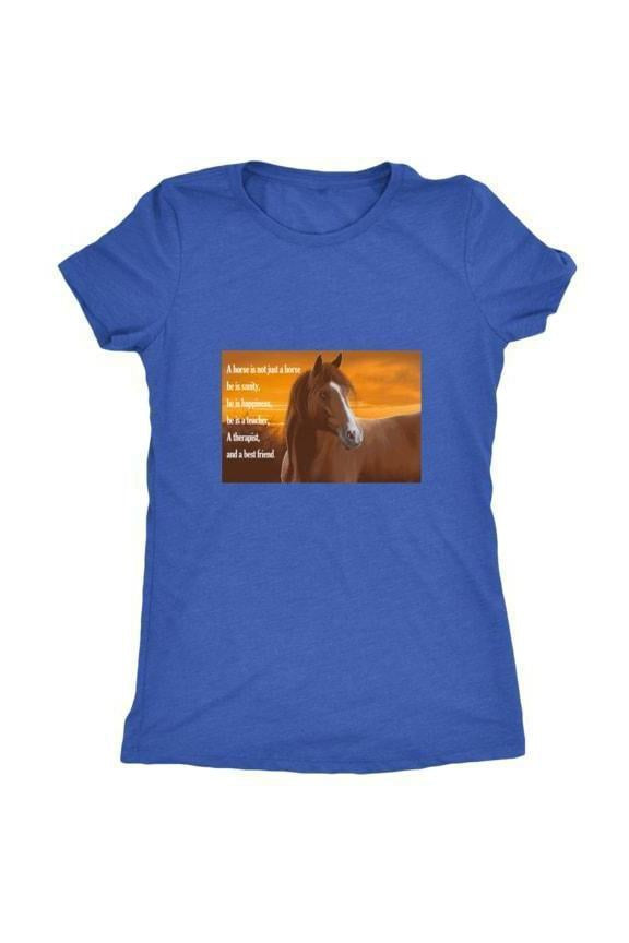 My Horse, My Friend - Tops-Tops-teelaunch-Ladies Triblend-Royal Blue-S-Three Wild Horses