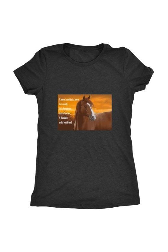 My Horse, My Friend - Tops-Tops-teelaunch-Ladies Triblend-Black-S-Three Wild Horses