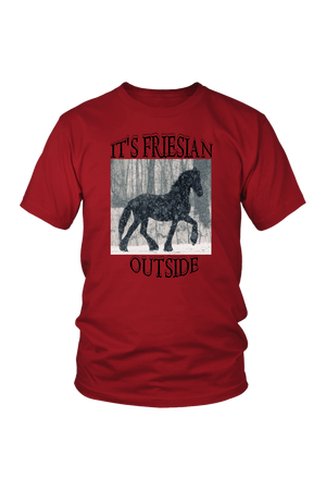 Brown It's Friesian Outside T-Shirt