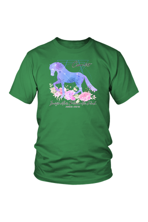 Cancer Horse Unisex Shirt-T-shirt-teelaunch-District Unisex Shirt-Kelly Green-S-Three Wild Horses