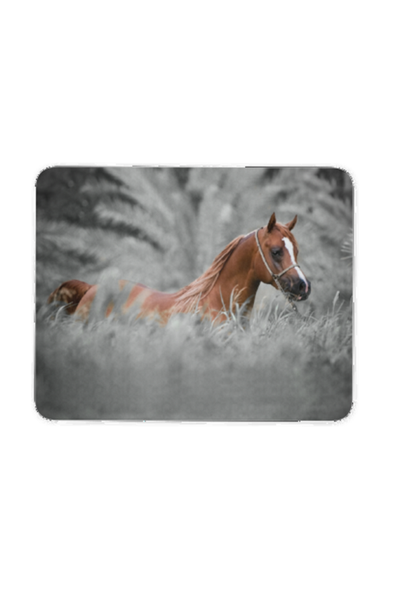 Horse in the wild - Mouse pad