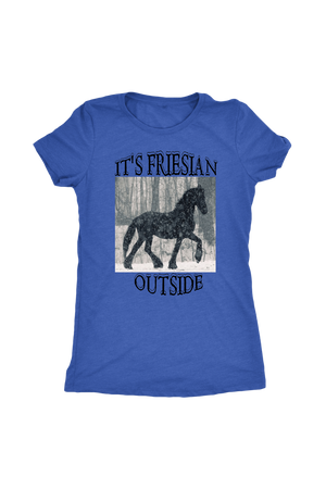 Steel Blue It's Friesian Outside T-Shirt