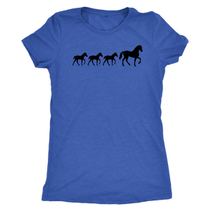 Steel Blue Three Foal - T-Shirt
