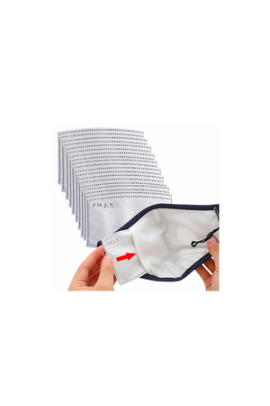 Gray Filters Set of Two PM2.5 Five-Layer Activated Carbon Filters