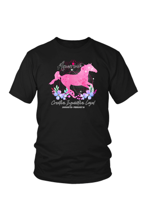 Aquarius Zodiac Horse Unisex Shirt-T-shirt-teelaunch-District Unisex Shirt-Black-S-Three Wild Horses