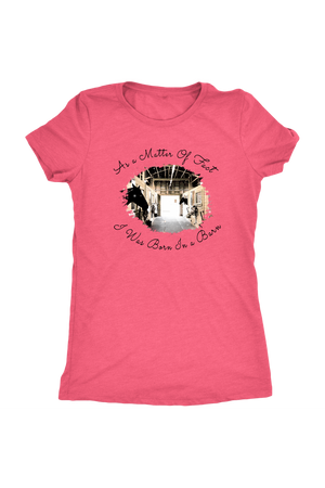 Born In A Barn - Tops-T-shirt-teelaunch-Ladies Triblend-Vintage Light Pink-S-Three Wild Horses