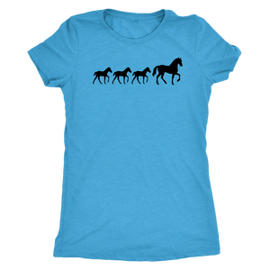 Cornflower Blue Three Foal - T-Shirt