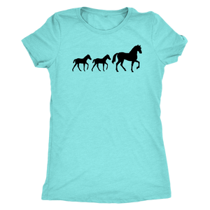 Sky Blue Two Foal - T-Shirt