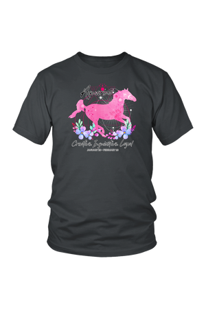 Aquarius Zodiac Horse Unisex Shirt-T-shirt-teelaunch-District Unisex Shirt-Charcoal-S-Three Wild Horses