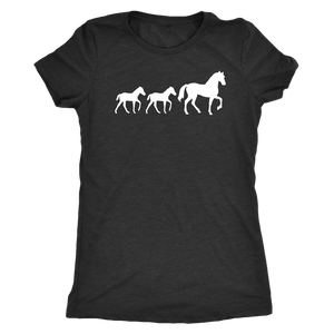 Dark Slate Gray Two Foal - T-Shirt in Black