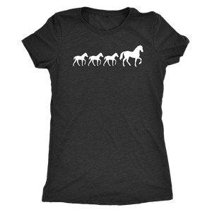Dark Slate Gray Three Foal - T-Shirt in Black