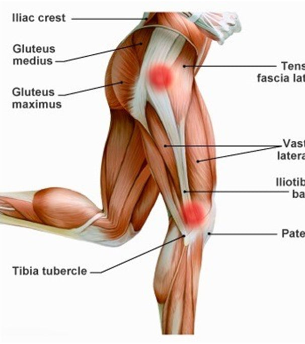 Rule 28 Knee Pain Physiotherapy