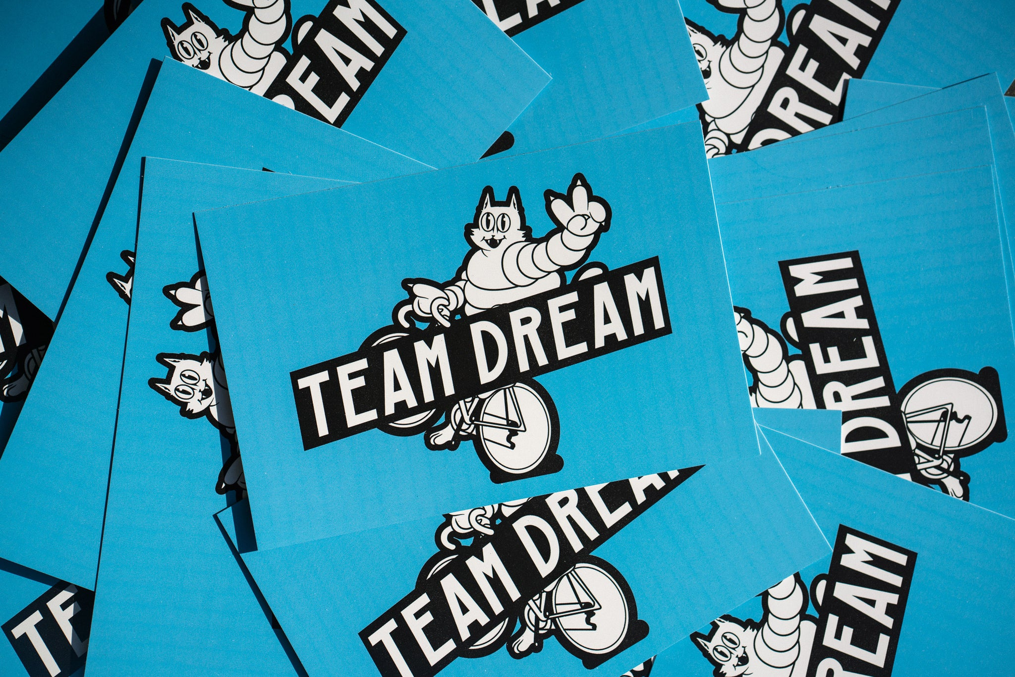 Team Dream post card contest