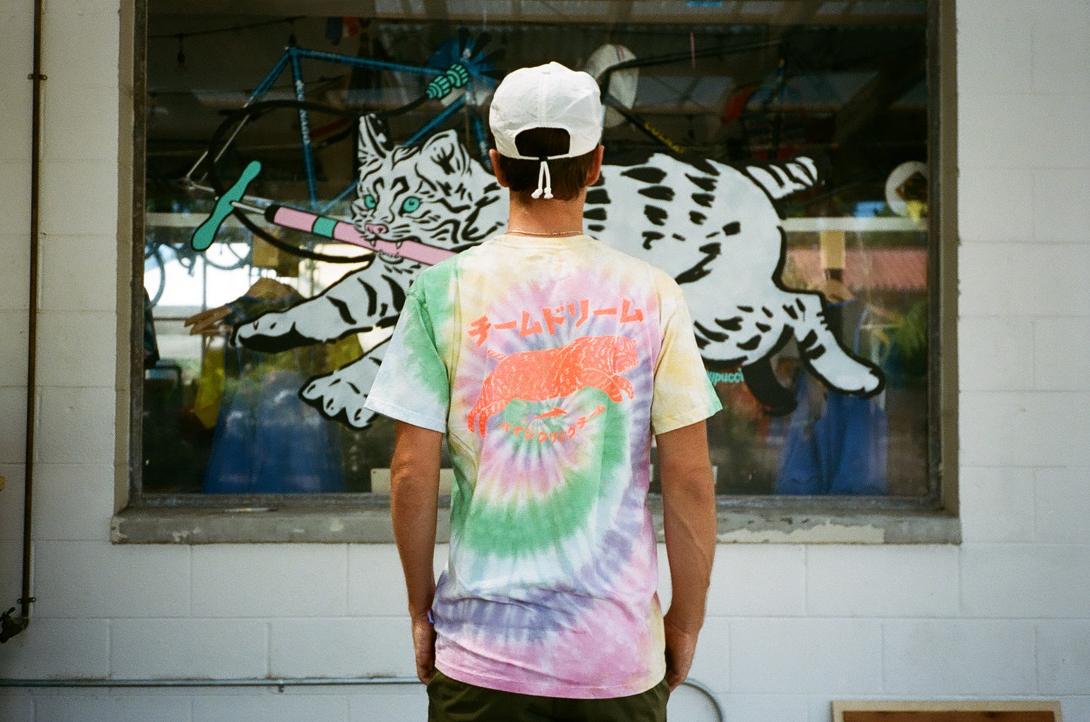 Pastel Tie Dye Japan Cat Heavyweight T