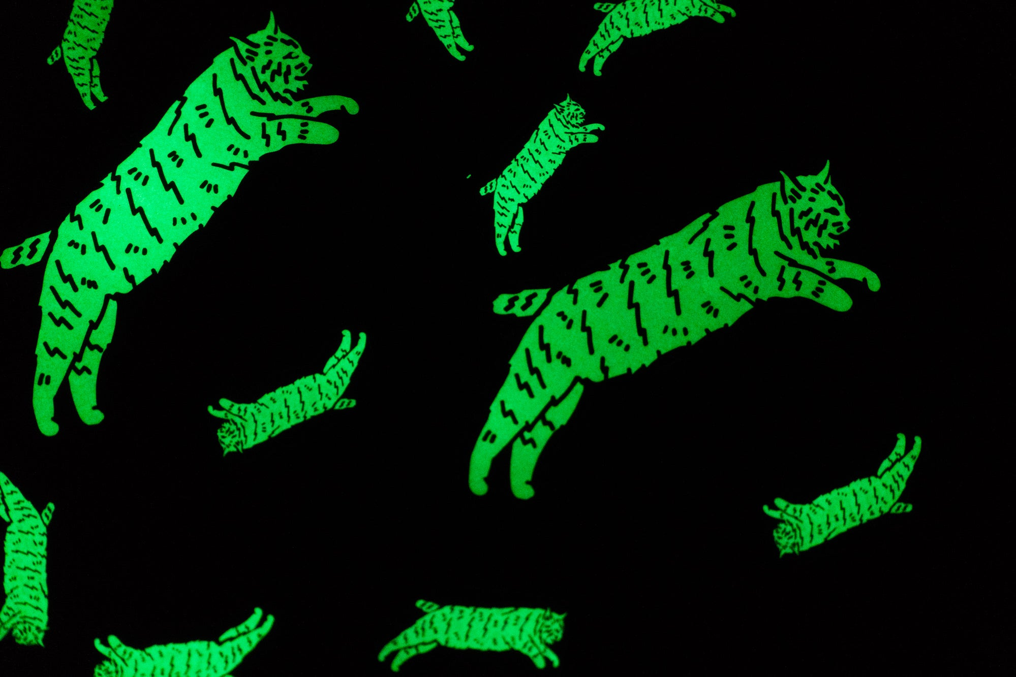 GLOW in the DARK Chubby Bobcat Die Cuts!