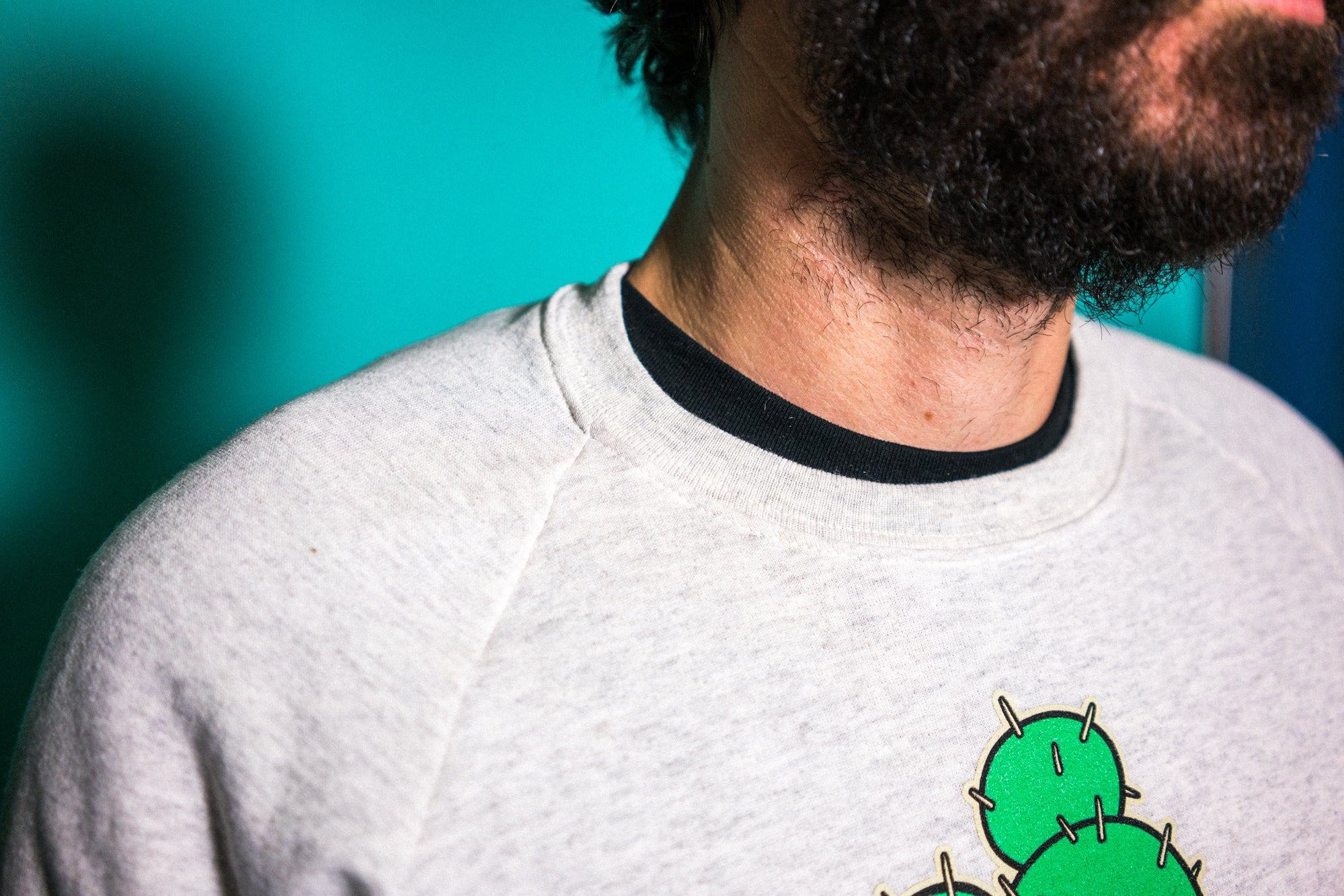Prickley Pals Lightweight Raglan