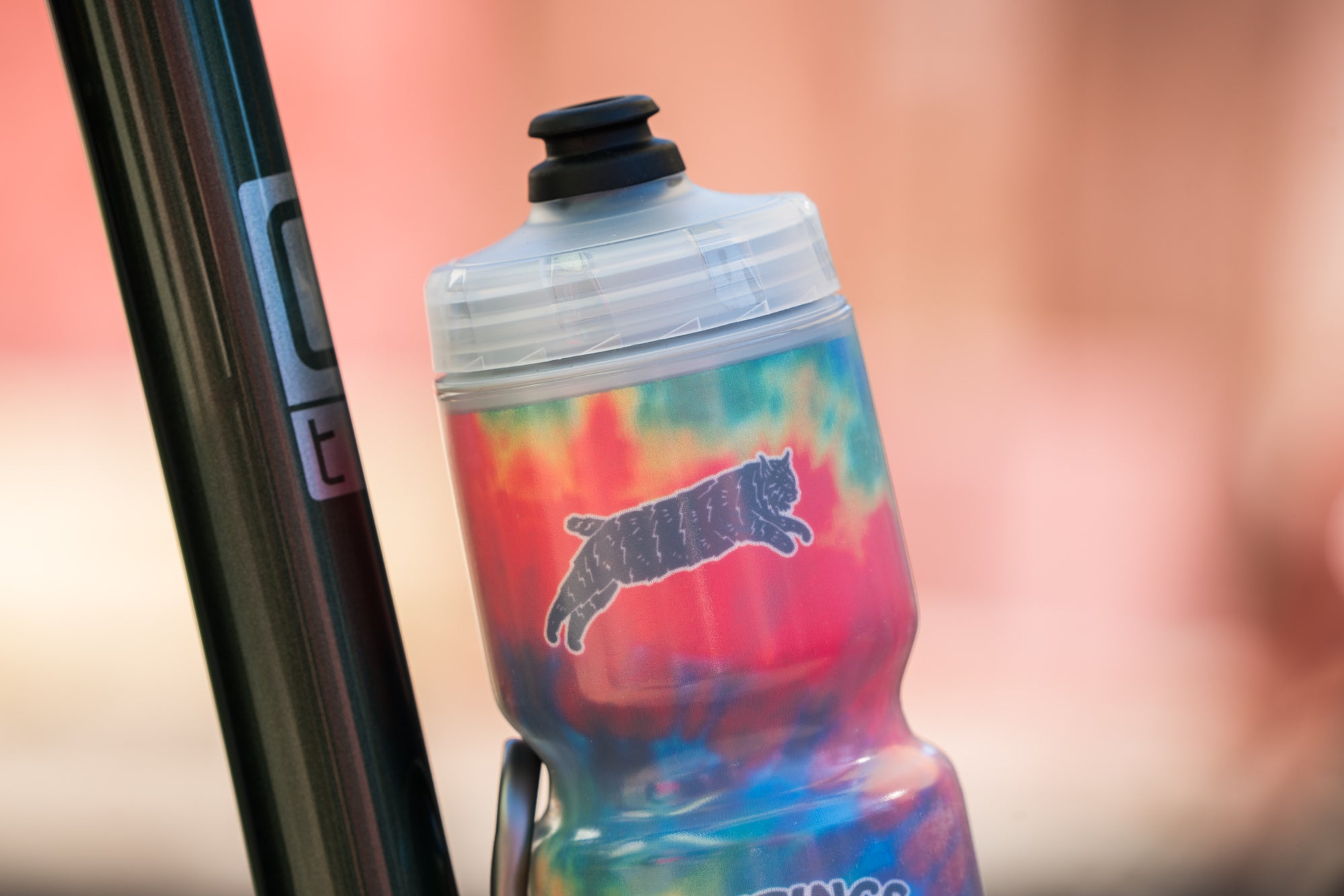 Greetings From California Tie Dye Insulated Bottle