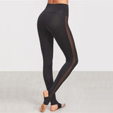 See Through Mesh Leggings - Black-PRIVATE CARTEL