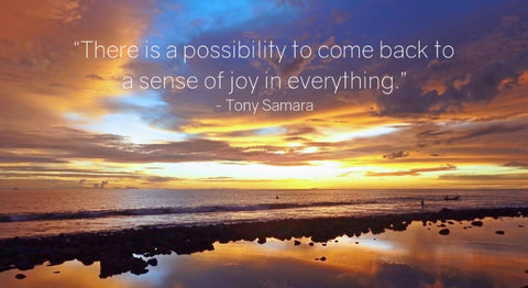 Discover a Sense of Joy in Everything