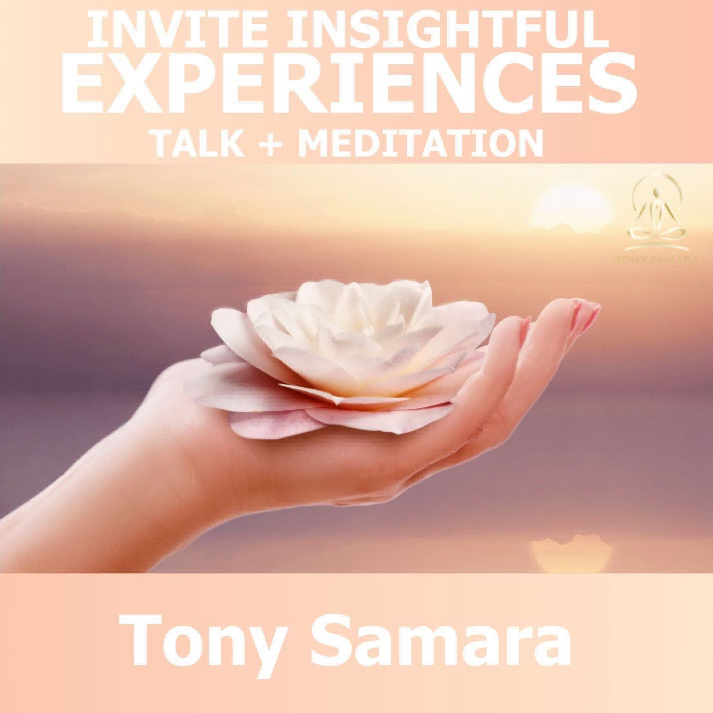 Invite Insightful Experiences - Talk + Meditation - Tony Samara Meditation