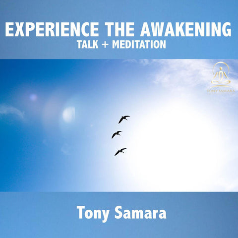 Experience the Awakening - Talk + Meditation - Tony Samara Meditation