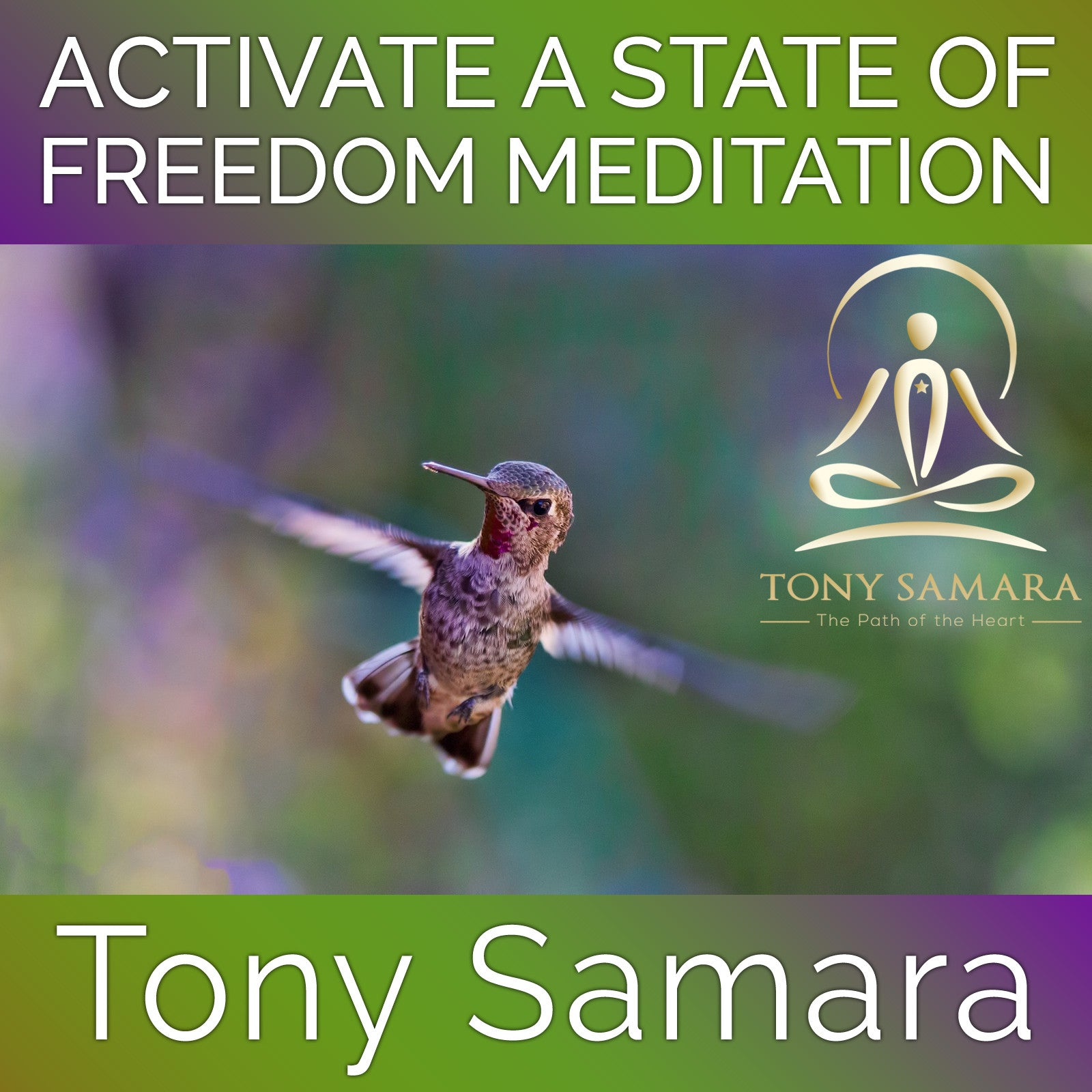 Activate a State of Freedom Meditation (MP3 Audio Download) - Tony Samara Meditation