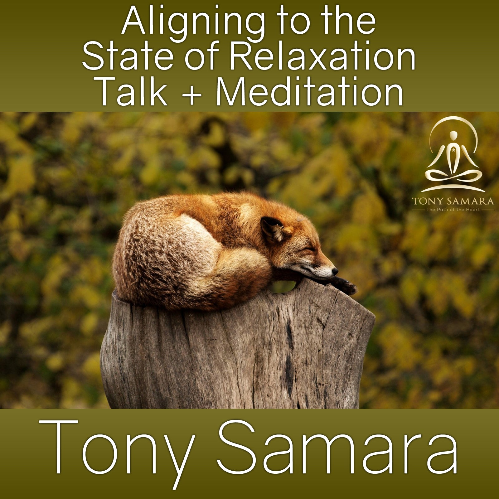Aligning to the State of Relaxation Talk + Meditation (MP3 Audio Download) - Tony Samara Meditation