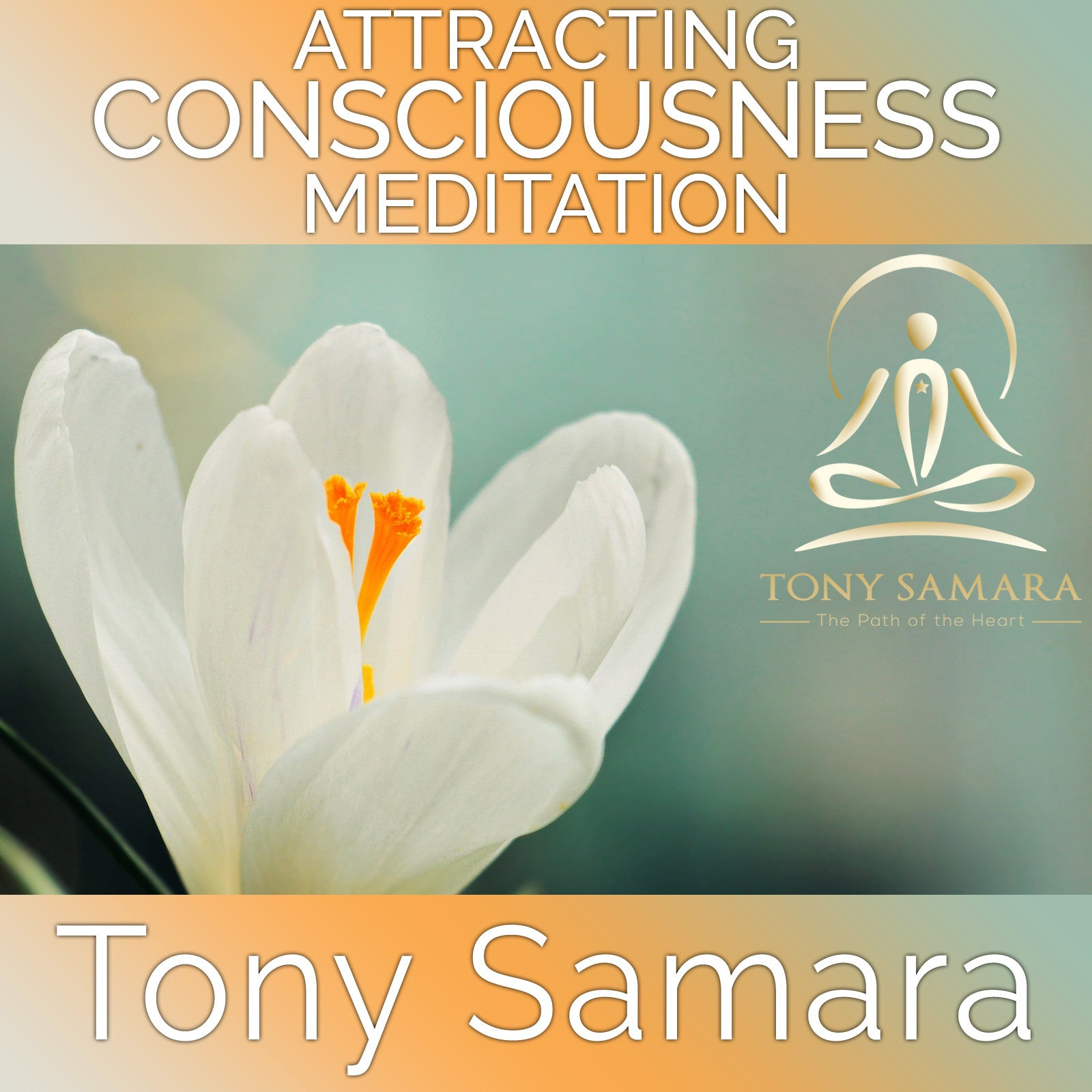 Attracting Consciousness Meditation (MP3 Audio Download) - Tony Samara Meditation