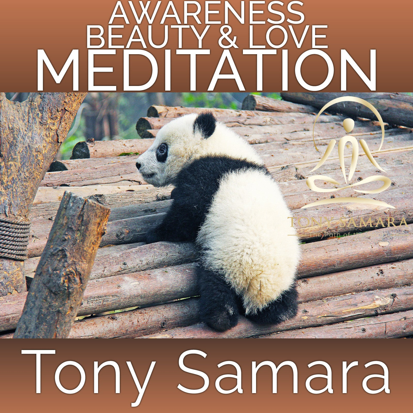 Awareness Beauty & Love Meditation (MP3 Audio Download) - Tony Samara Meditation
