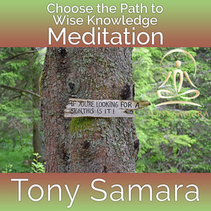Choose the Path to Wise Knowledge Meditation (MP3 Audio Download) - Tony Samara Meditation