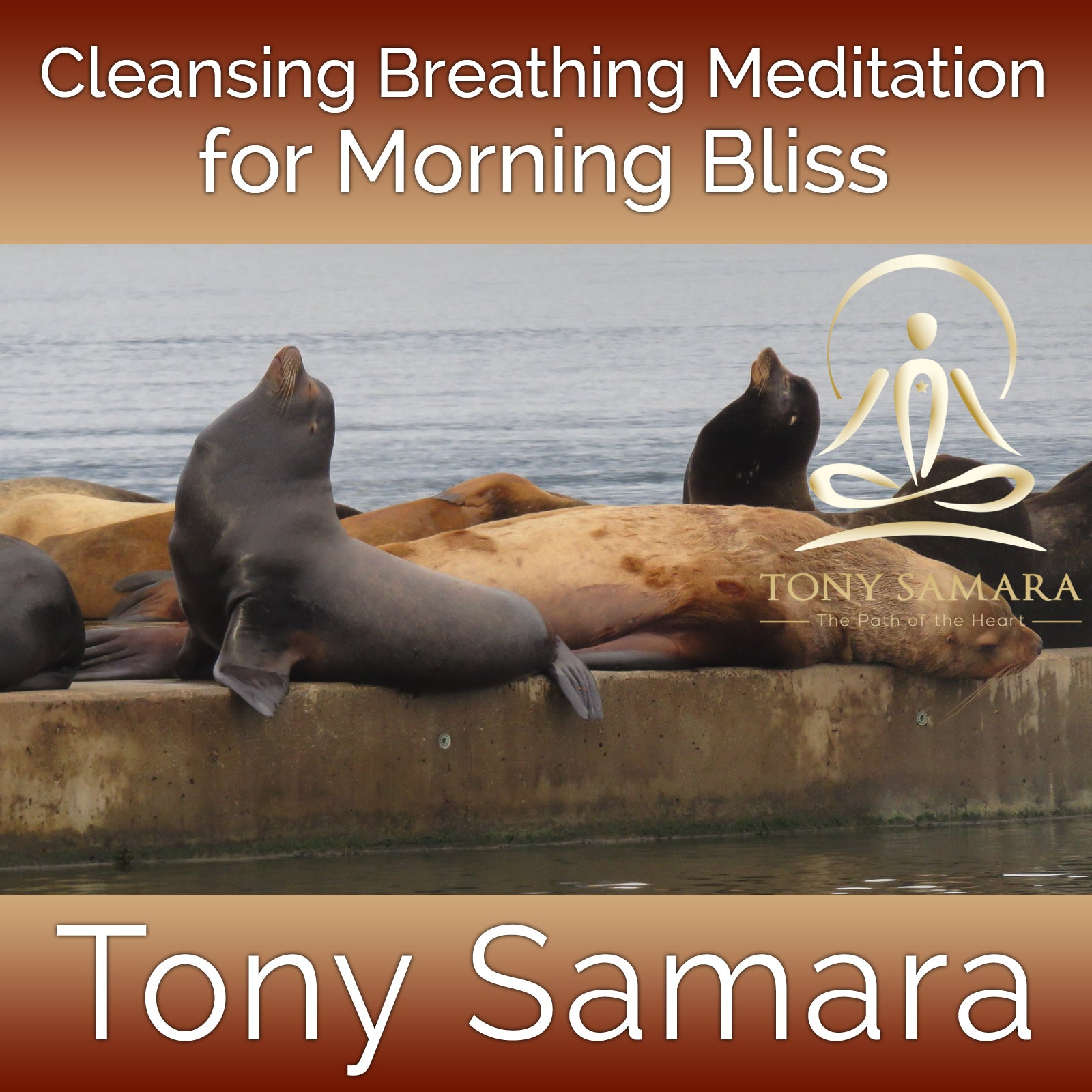 Cleansing Breathing Meditation for Morning Bliss (MP3 Audio Download) - Tony Samara Meditation