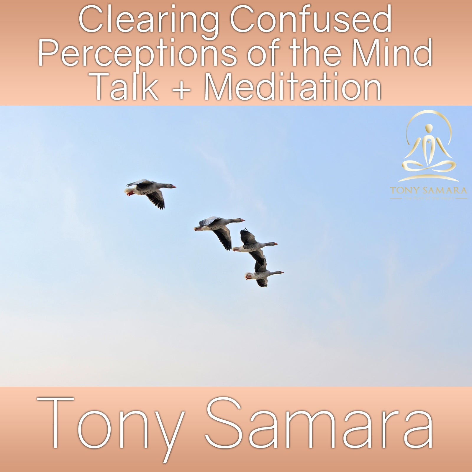 Clearing Confused Perceptions of the Mind Talk + Meditation (MP3 Audio Download) - Tony Samara Meditation