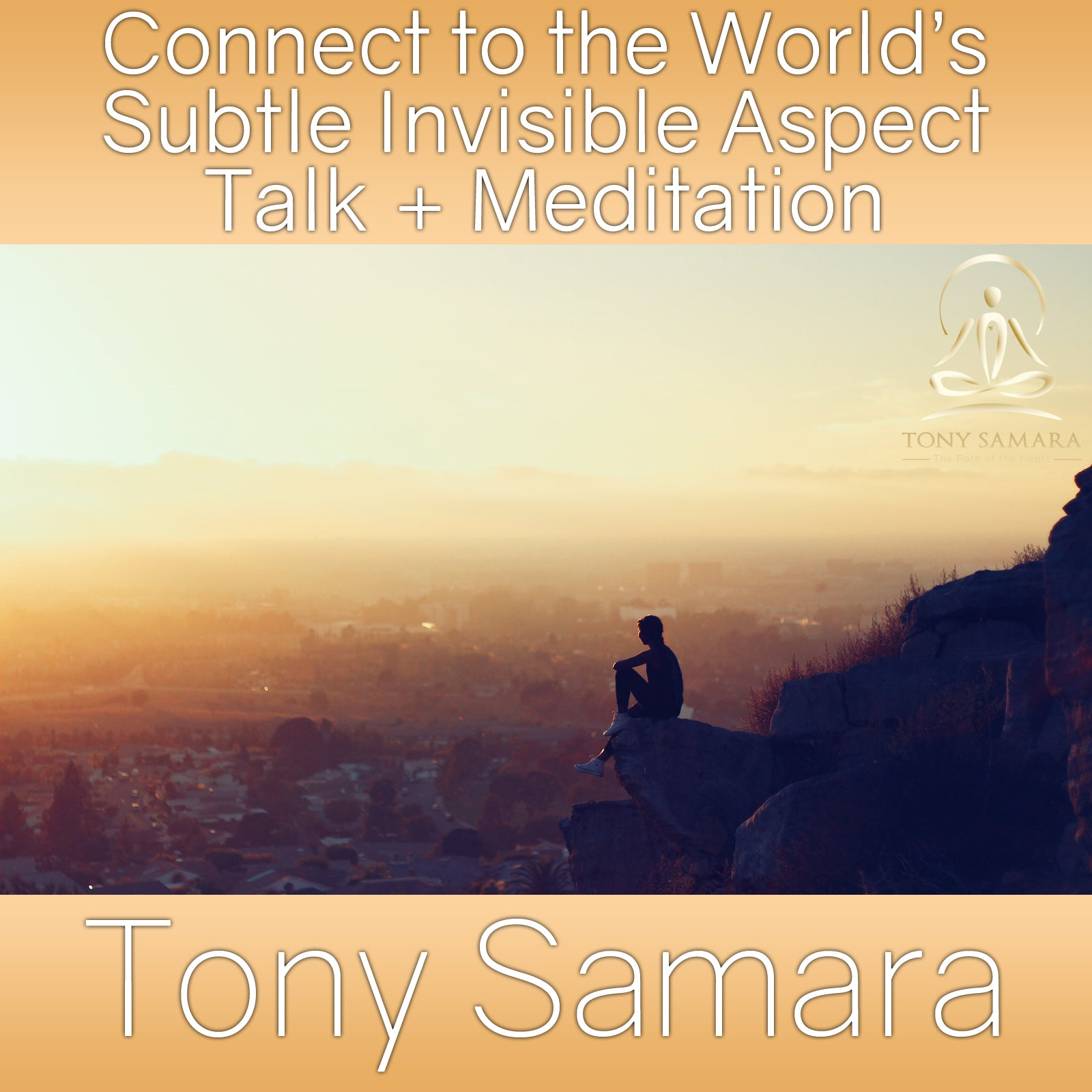 Connect to the World's Subtle Invisible Aspect Talk + Meditation (MP3 Audio Download) - Tony Samara Meditation