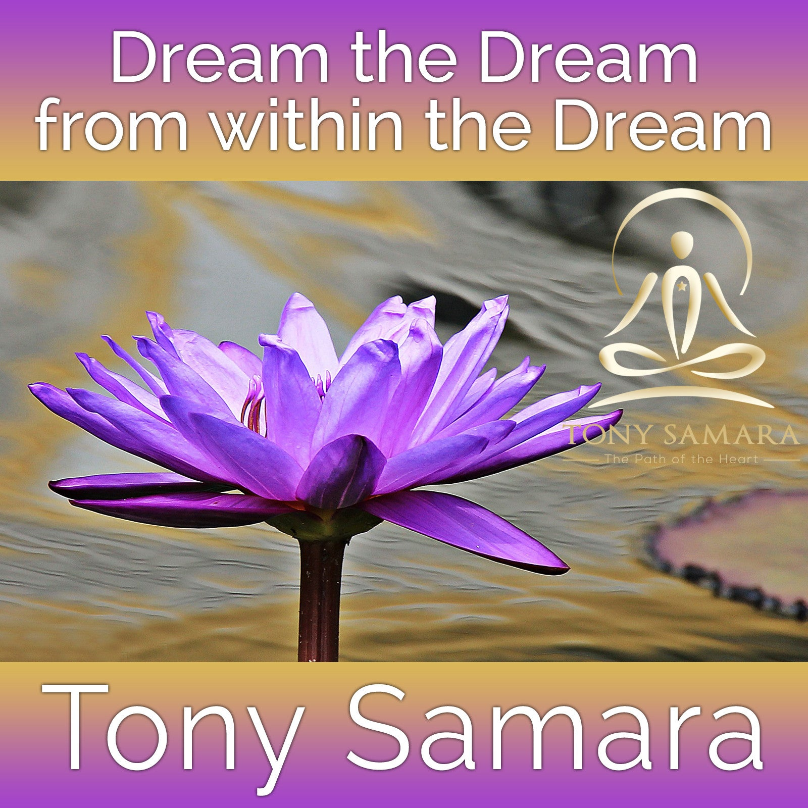 Dream the Dream from within the Dream (MP3 Audio Download) - Tony Samara Meditation