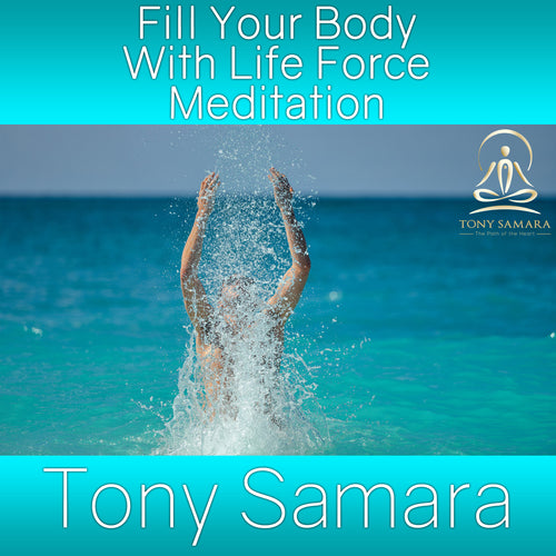 Fill Your Body With Life Force Meditation (MP3 Audio Download)