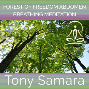 Forest of Freedom Abdomen Breathing Meditation (MP3 Audio Download) - Tony Samara Meditation