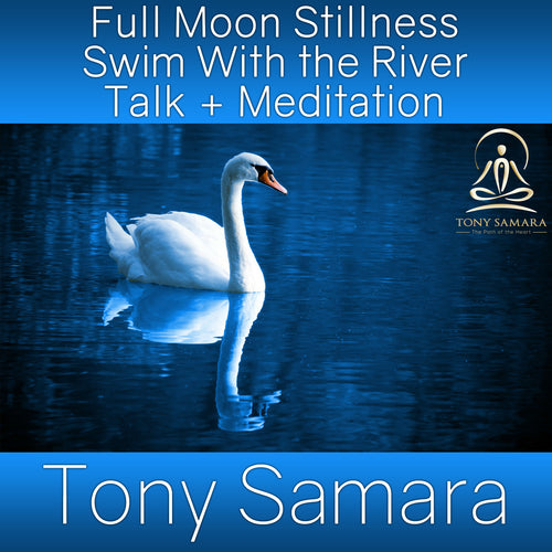 Full Moon Stillness Swim With the River Talk + Meditation (MP3 Audio Download)