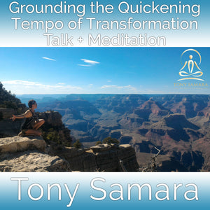 Grounding the Quickening Tempo of Transformation Talk + Meditation (MP3 Audio Download) - Tony Samara Meditation