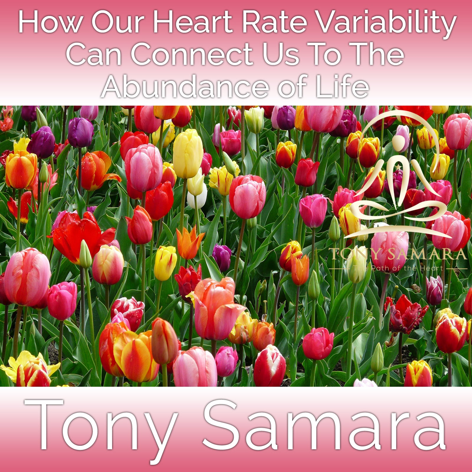 How Our Heart Rate Variability Can Connect Us To The Abundance of Life (MP3 Audio Download) - Tony Samara Meditation