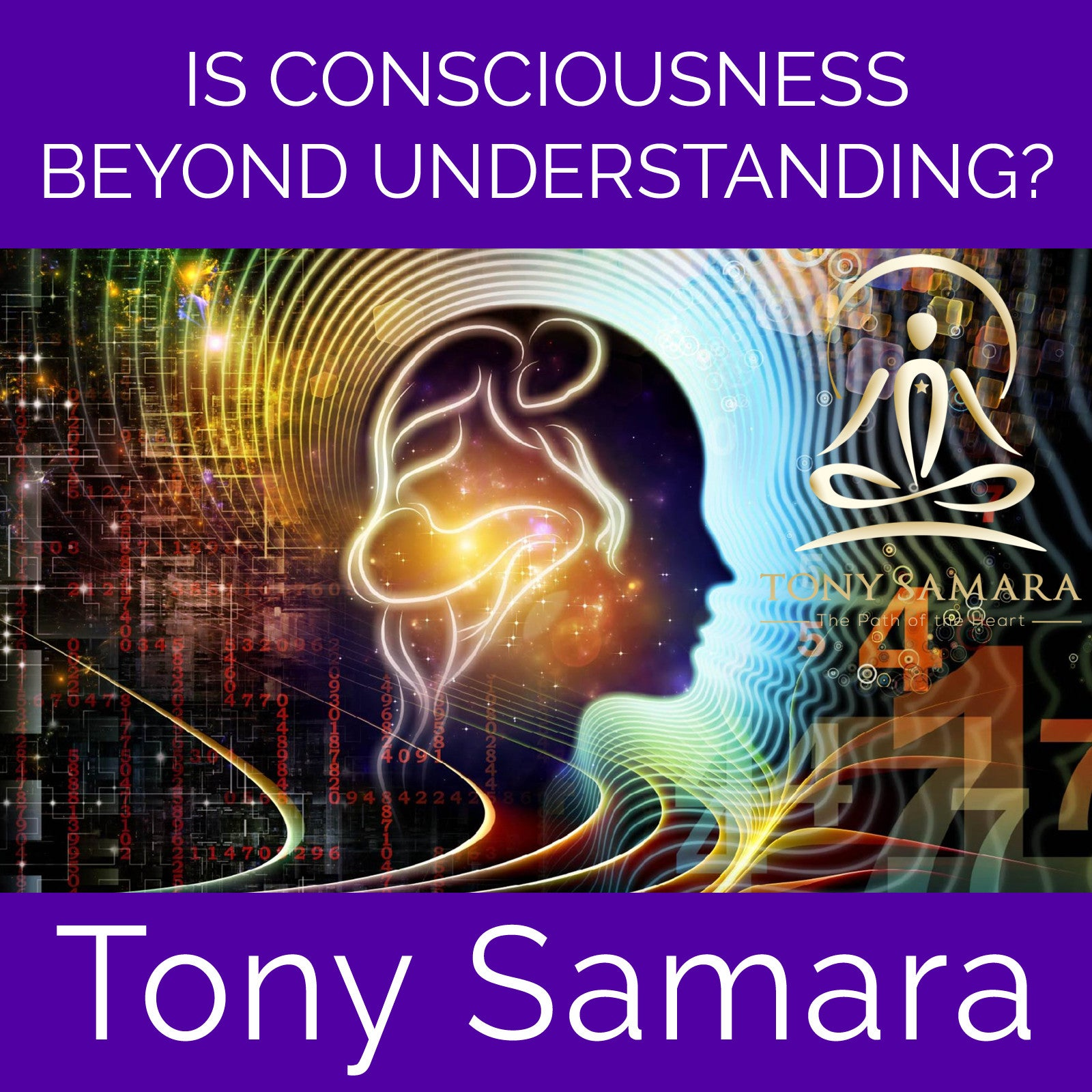 Is Consciousness Beyond Understanding? (MP3 Audio Download) - Tony Samara Meditation