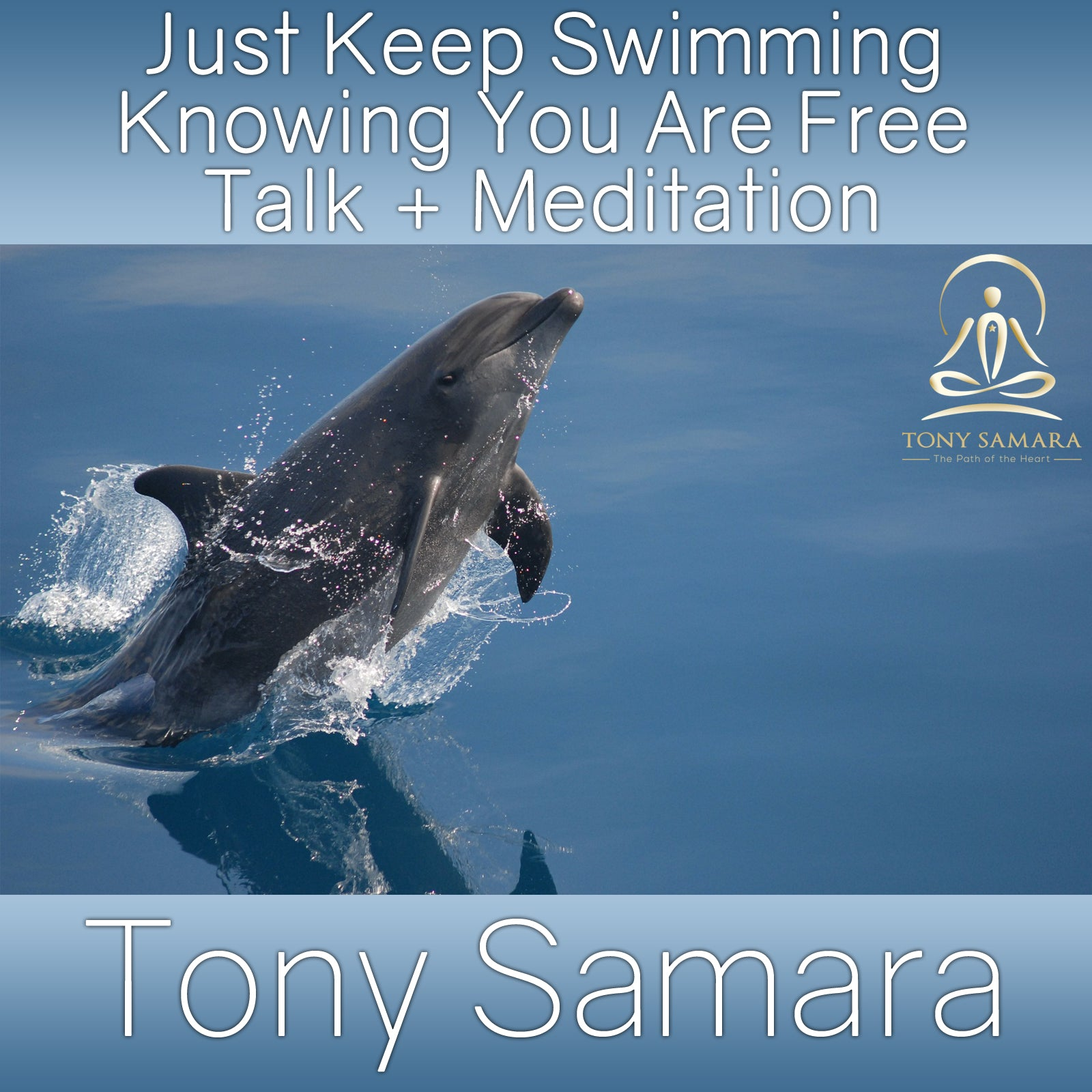 Just Keep Swimming Knowing You Are Free Talk + Meditation (MP3 Audio Download) - Tony Samara Meditation