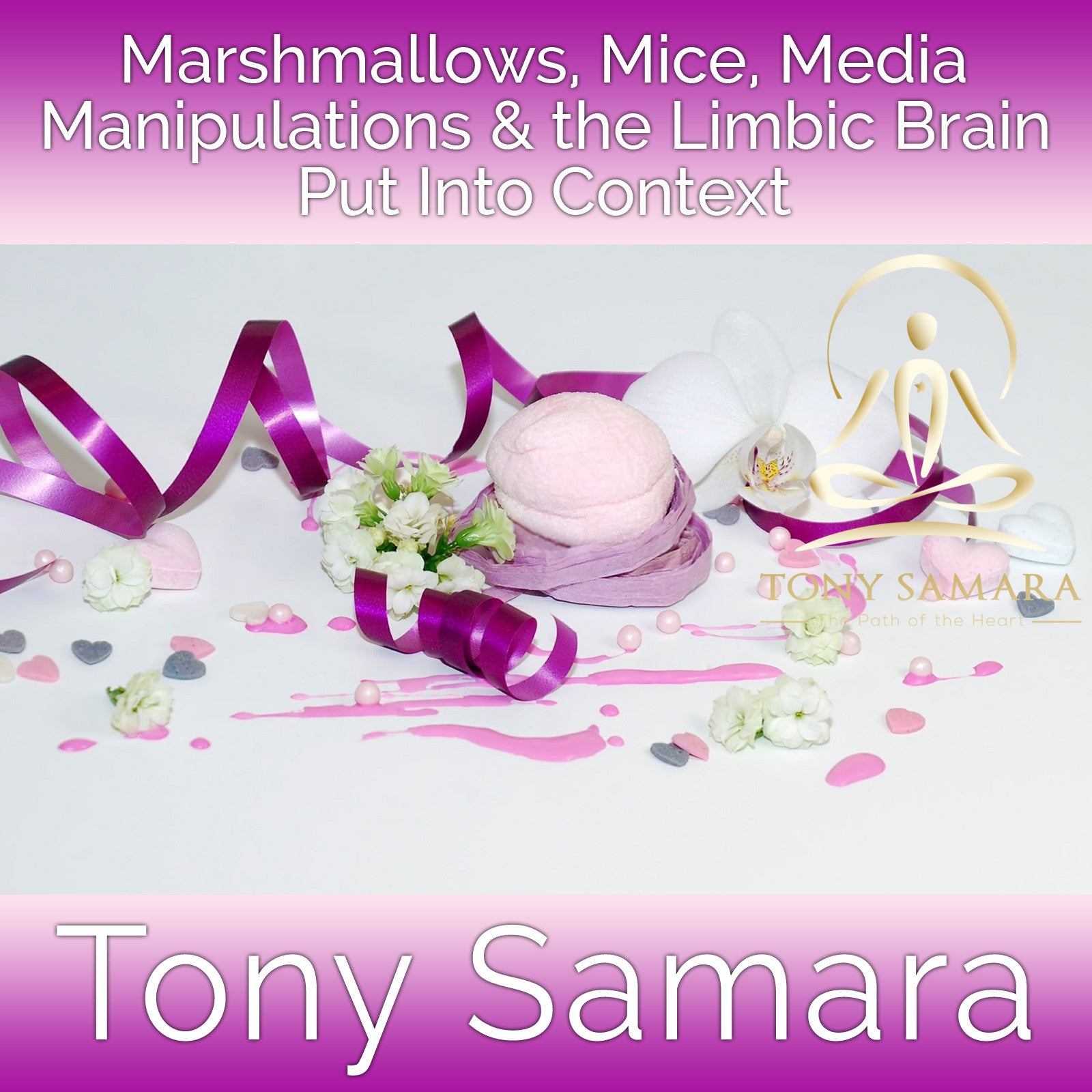 Marshmallows, Mice, Media Manipulations & the Limbic Brain Put Into Context (MP3 Audio Download) - Tony Samara Meditation