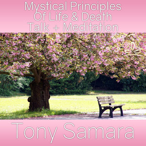 Mystical Principles Of Life & Death Talk + Meditation (MP3 Audio Download) - Tony Samara Meditation