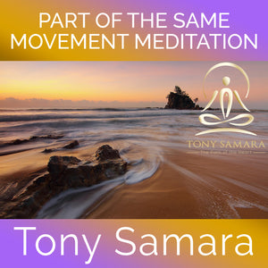 Part of the Same Movement Meditation (MP3 Audio Download) - Tony Samara Meditation