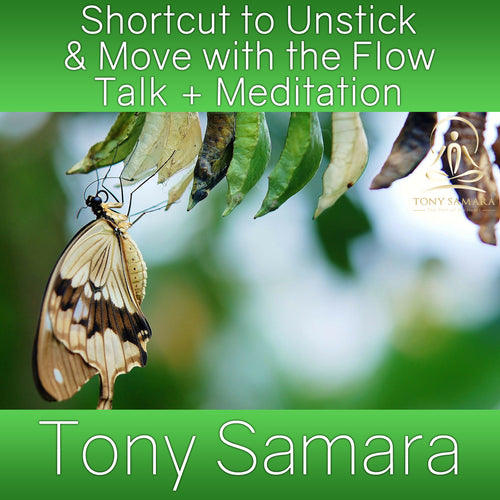 Shortcut to Unstick & Move with the Flow Talk + Meditation (MP3 Audio Download)