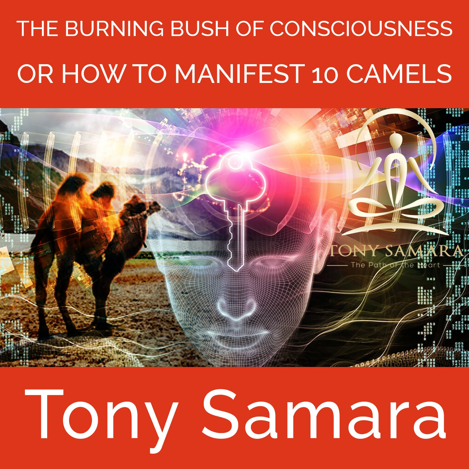 The Burning Bush of Consciousness or How to Manifest 10 Camels (MP3 Audio Download) - Tony Samara Meditation