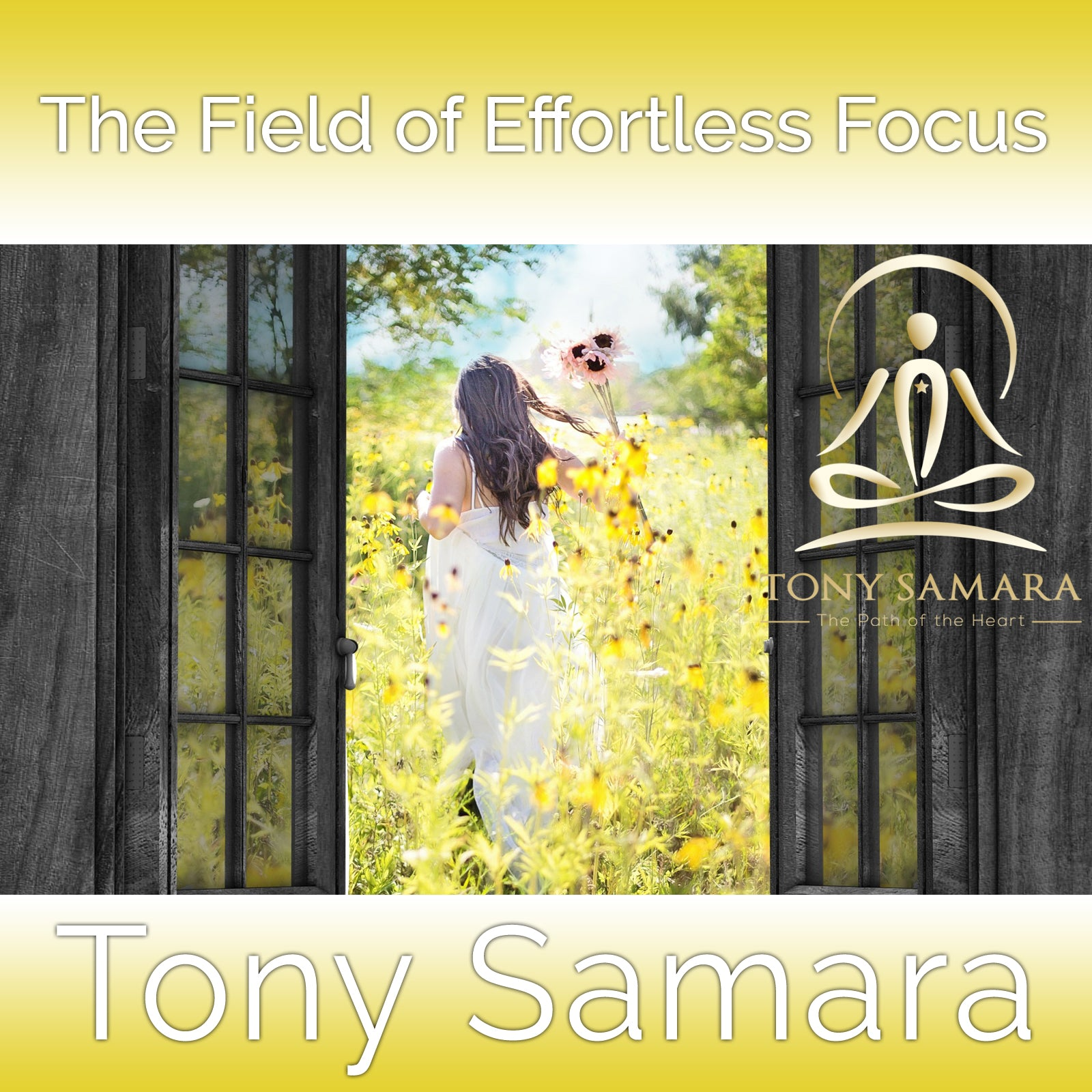 The Field of Effortless Focus (MP3 Audio Download) - Tony Samara Meditation
